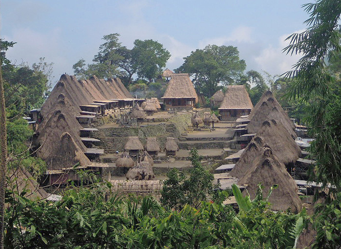 Flores And Komodo Tour The Detailed Tour In Flores In