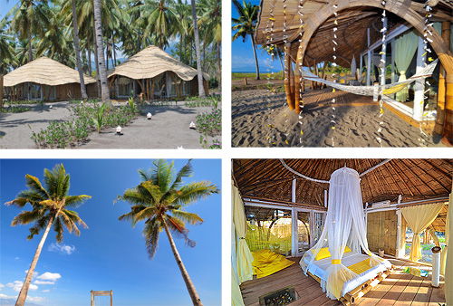 Coconut Garden Beach Resort in Maumere - Flores Island - Indonesia