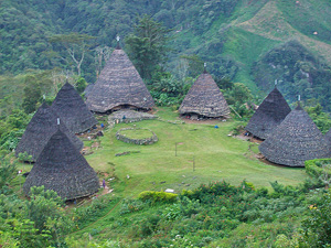 traditional circular and cone-shaped buildings called Mbaru Niang